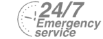 24/7 Emergency Service Pest Control in Tolworth, Berrylands, KT5. Call Now! 020 8166 9746